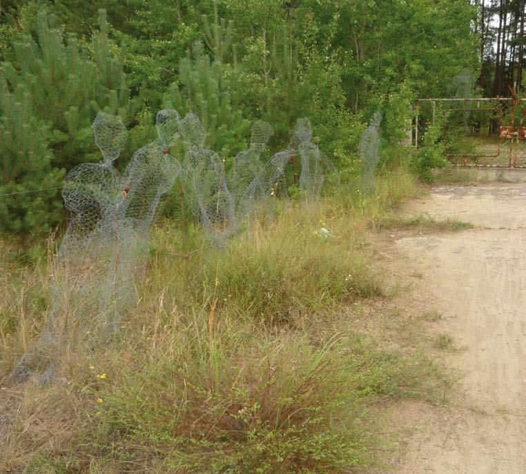 Skulpturen aus Maschendraht, die lebensgroße menschliche Figuren darstellen, vor Büschen neben einem Weg
