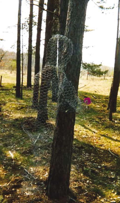 Zwischen Bäumen steht eine aus Maschendraht geformte menschliche Figur, die eine Blume in der Hand hält.