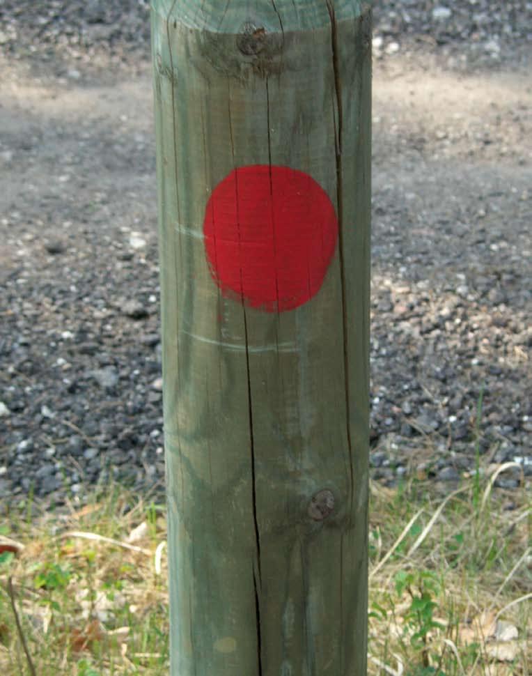 Holzpfahl, auf den mit Lack ein roter Punkt gemalt ist